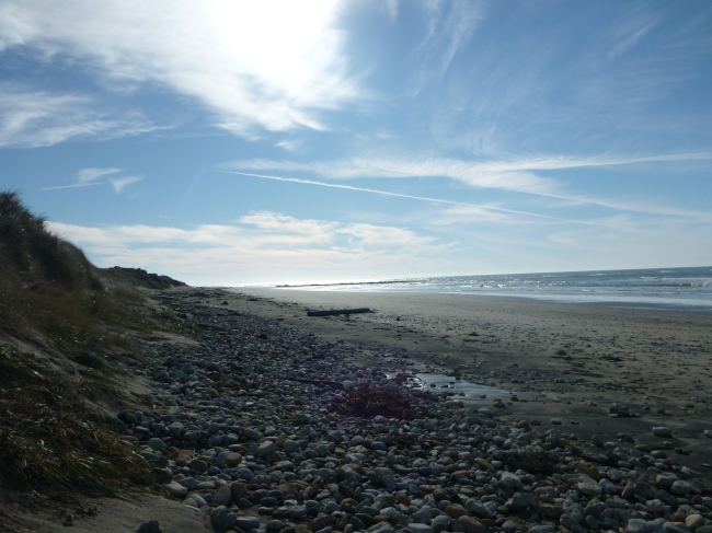 The beach we monitor for tsunami debris: North Point Beach.