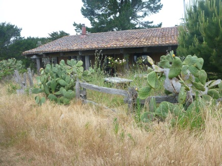 This old Adobe house withering without attention.