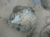 Complex rocks.