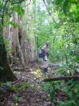 Our field guide looking for chimps.